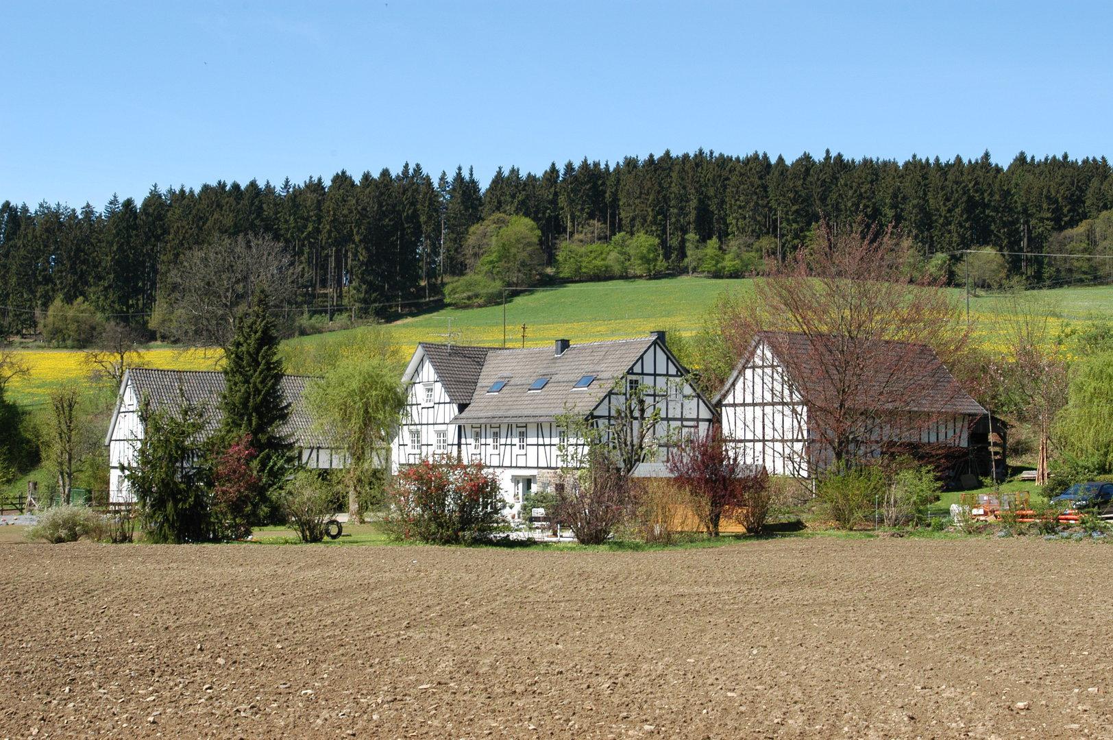 Landschaftsbild von Schmalenbachsmühle