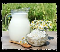 Krug Milch und einer Schüssel Joghurt