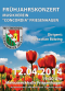 Frühjahrskonzert Plakat 2014